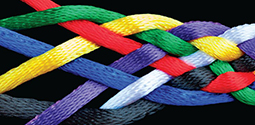 Braided Multi-Colored Ropes Thumbnail