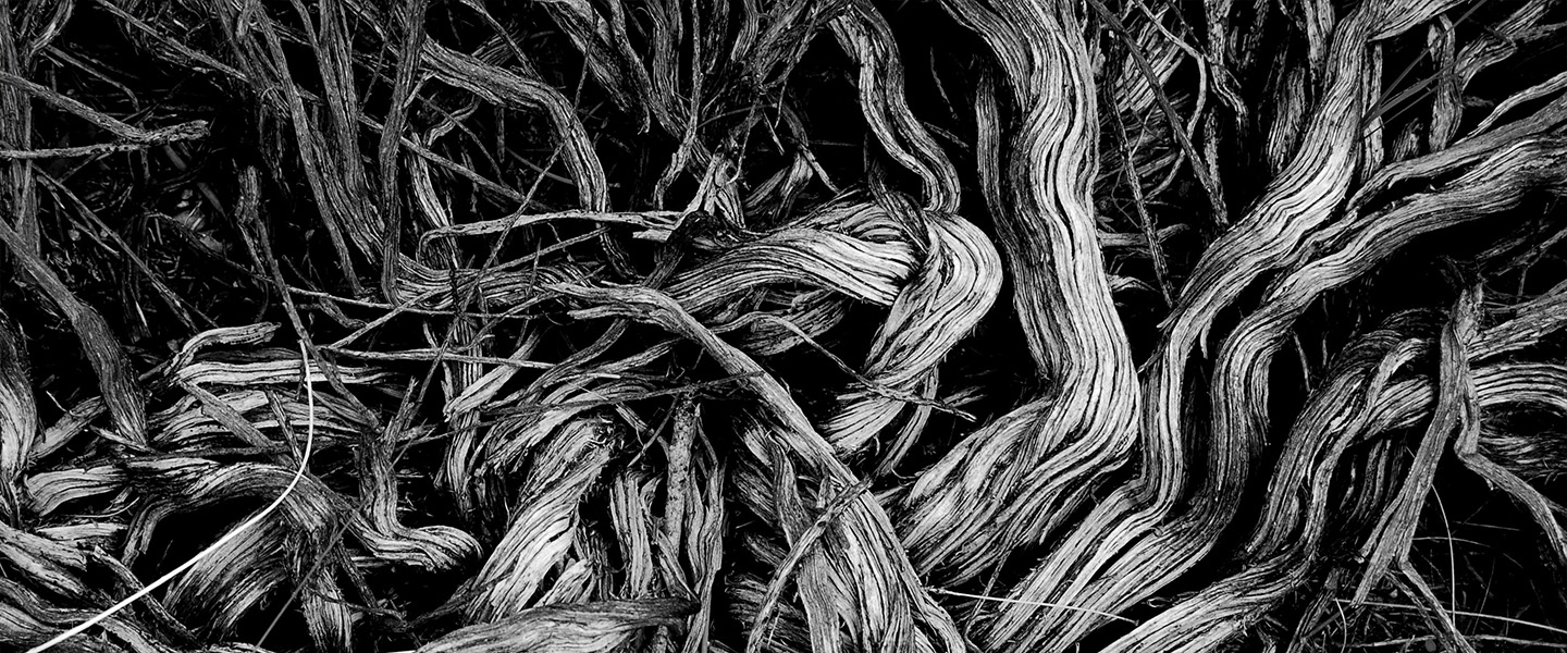 Depth, Expertise and Value