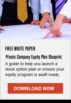 Free White Paper - Private Company Equity Plan Blueprint