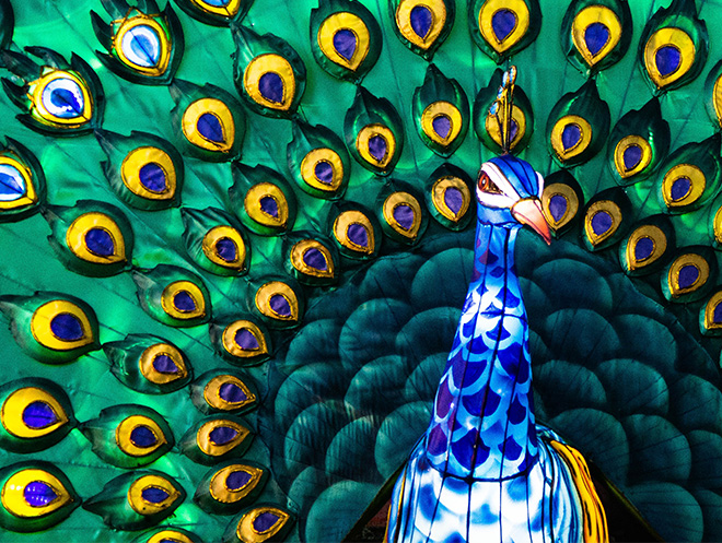 Business management for successful people