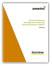 Rimini Street Dynamic Insights Cover